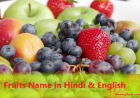 Fruits name in Hindi and English - Full List